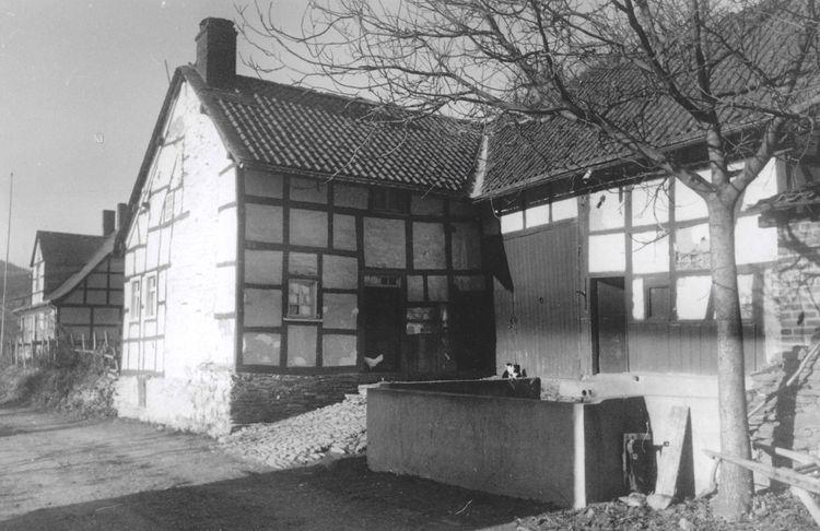 Haus Hammer